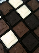 Solid Chocolate squares