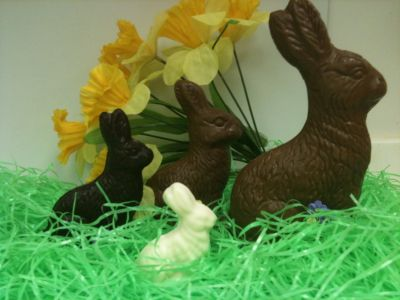 Solid Chocolate Bunnies